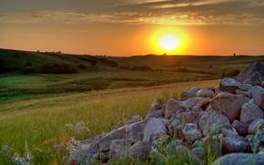 закат,  поле,  небо,  солнце