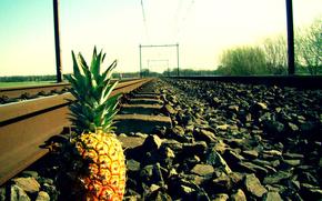 Rails, crushed stone, pineapple