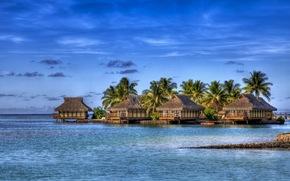 morze, wyspa, egzotyka