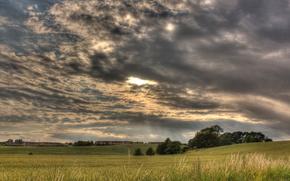 champ, ciel, paysage