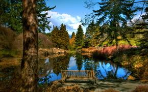 парк,  скамья,  озеро,  небо