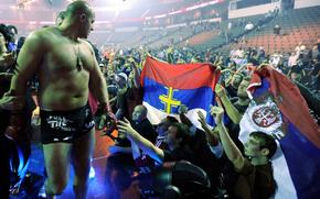 Fedor Emelianenko, sport, celebrity, great