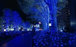 Tokio, Navidad, guirnaldas