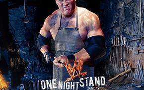WWE One Night Stand, , film, movies