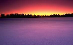 neige, coucher du soleil, arbres
