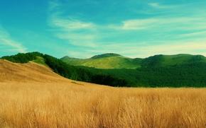 te pola, zielone wzgrza, Bkitne niebo