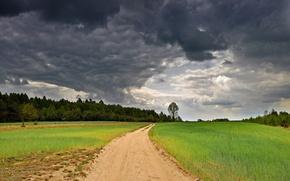 field, road, sky