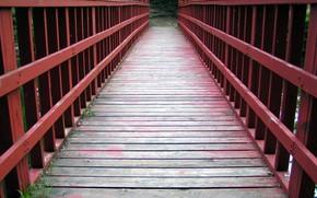 ponte, strada, modo, vita