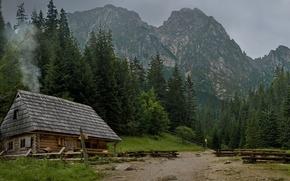 дом,  горы,  природа