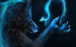 fantaisie, loup, magie, loup-garou
