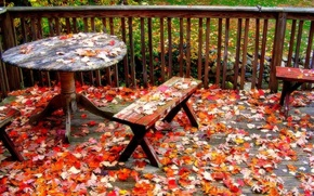 autumn, leaves, Table