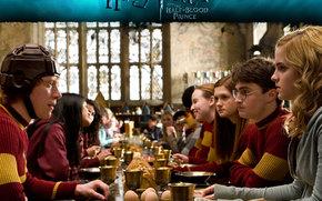 Harry Potter e il principe mezzosangue, Harry Potter e il principe mezzosangue, film, film