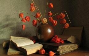 still life, Books, Flowers, vase