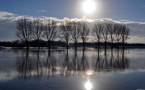 campo, alluvione, cielo, natura, alberi, paesaggio