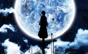 блич, луна, цвет
