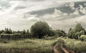 领域, 道路, 性质, 景观