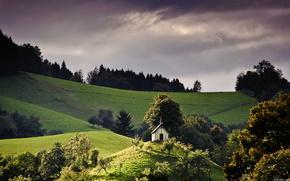 field, sky, nature, landscape