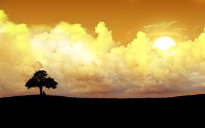 arbre solitaire, nuages, soleil