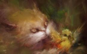 quadro, gato, pssaro