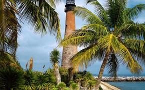 Florida, latarnia morska, palma