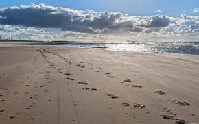 sea, beach, sand, sky, landscape