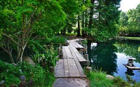 bridge, river, forest, paradise