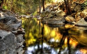 река,  камни,  лес,  природа