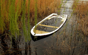 озеро,  лодка,  камыш,  природа
