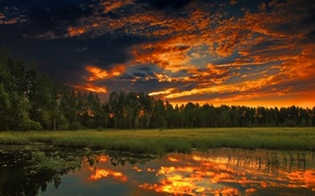 clouds, lake, Trees, forest, sunset