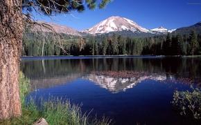 paesaggio, vista, profumatamente, natura, carta da parati