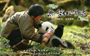 След панды, Xiong mao hui jia lu, фильм, кино