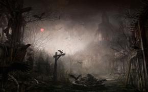 darkness, Ravens, castle