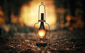 lampada, luce, Macro