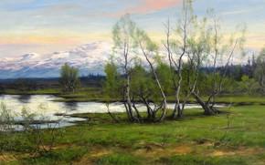 Johan tiren, montagne e betulla a un serbatoio, natura, immagine