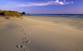 trazas de, arena, costa, mar