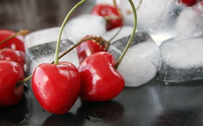 cherry, ice, macro, berry