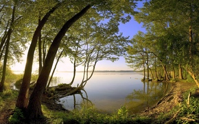 paesaggio, vista, natura, profumatamente, carta da parati