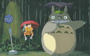 Totoro, Hayao Miyazaki, lluvia, paraguas