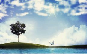 farfalla, albero, lago