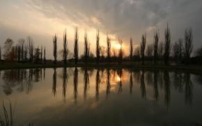 солнце, пруд, закат, деревья