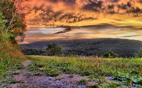 paisagem, natureza, ver, quadro, bom, papel de parede