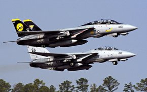 Авиа, Истребитель, f-14 tomcat
