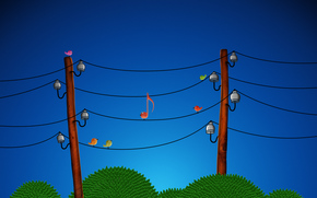 wire, Birds, music