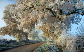 Frost, road, silence