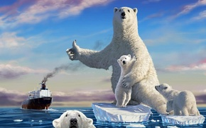 Niedwiedzie, statek, ocean, ice floe