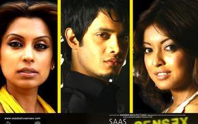 Saas Bahu Aur Sensex, , film, film