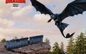 Как приручить дракона, How to Train Your Dragon, film, movies