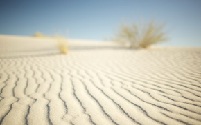 пустыня,  песок,  бархан