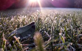 gelo, su erba, in sevete luce