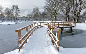 парк,  зима,  мост